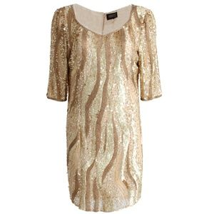 Adrianna Papell Collection Embellished Dress M/10